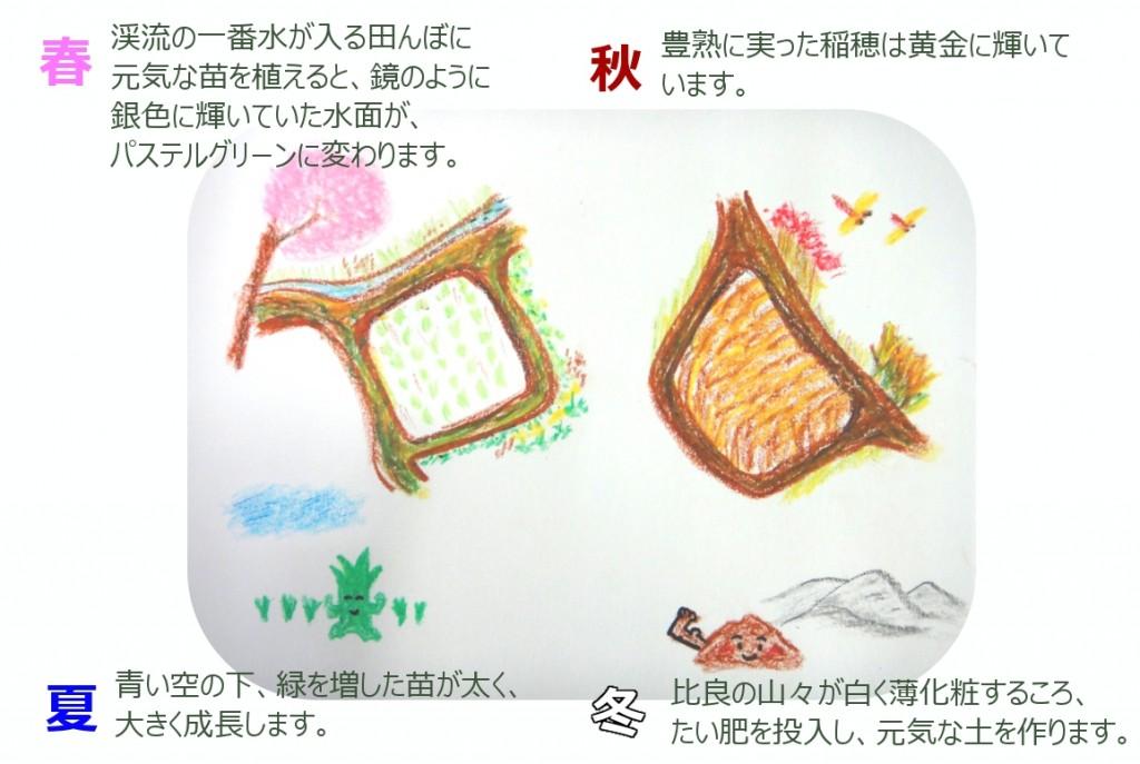 田んぼの四季