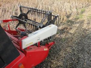 大豆刈り(横から)