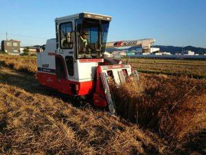 麦刈り 2018